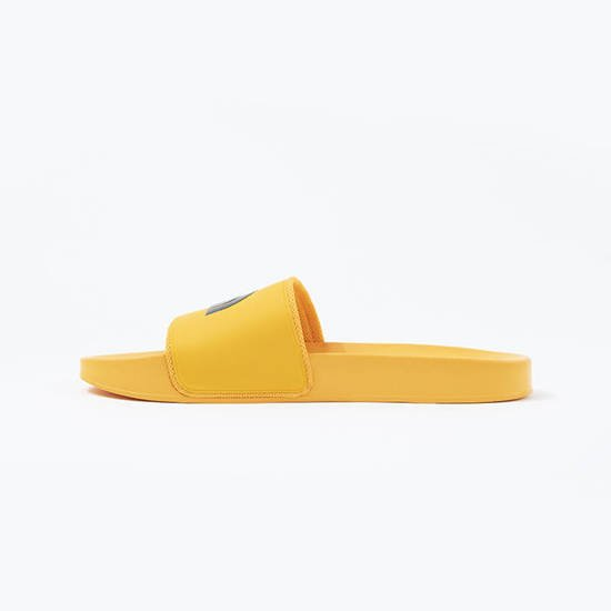 The North Face Base Camp Slide II NF0A3FWOZU3